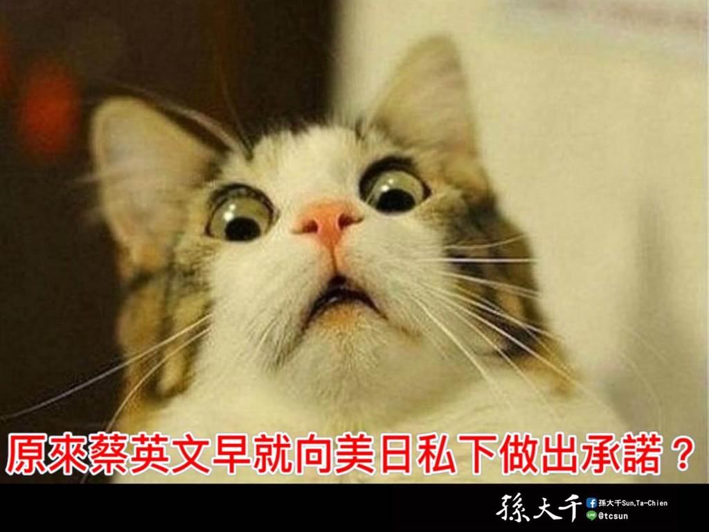 """2008年美日为何挺蔡英文?前""""蓝委"""":早就私下承诺进口莱猪核食"""