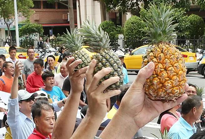 5万吨台湾菠萝卖不出去!国民党高层批民进党:当初怎么羞辱武汉的?